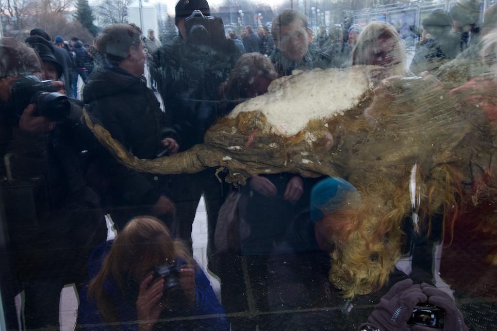 mammut Yuka