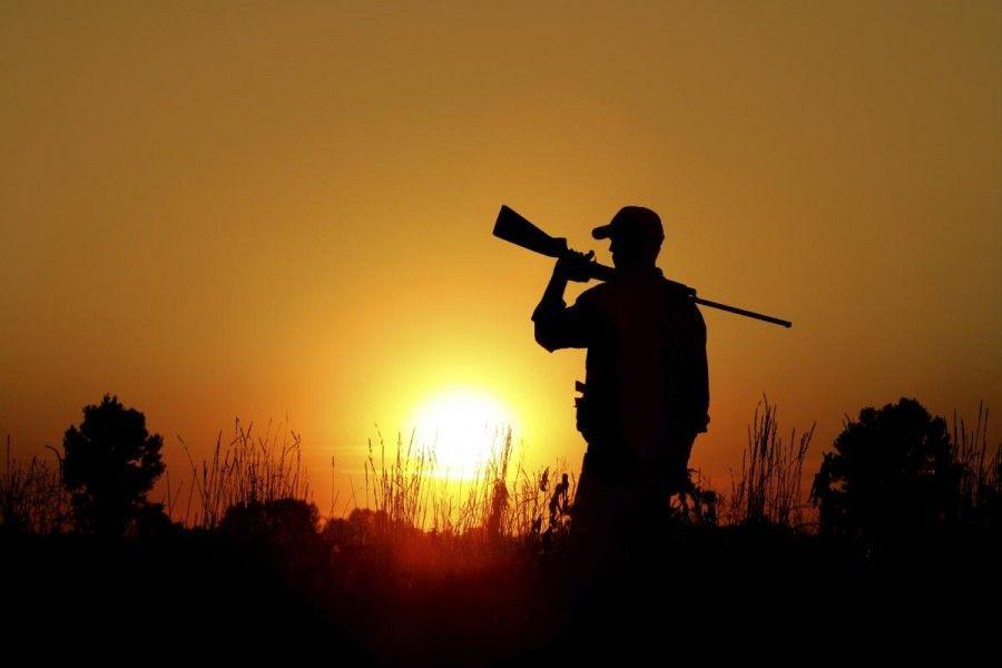 Cartucce da caccia: stop al piombo, è pericoloso