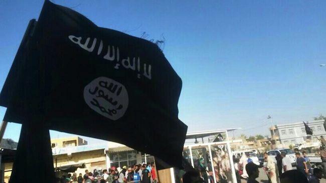 Isis, usate bombe con scorpioni vivi in Iraq