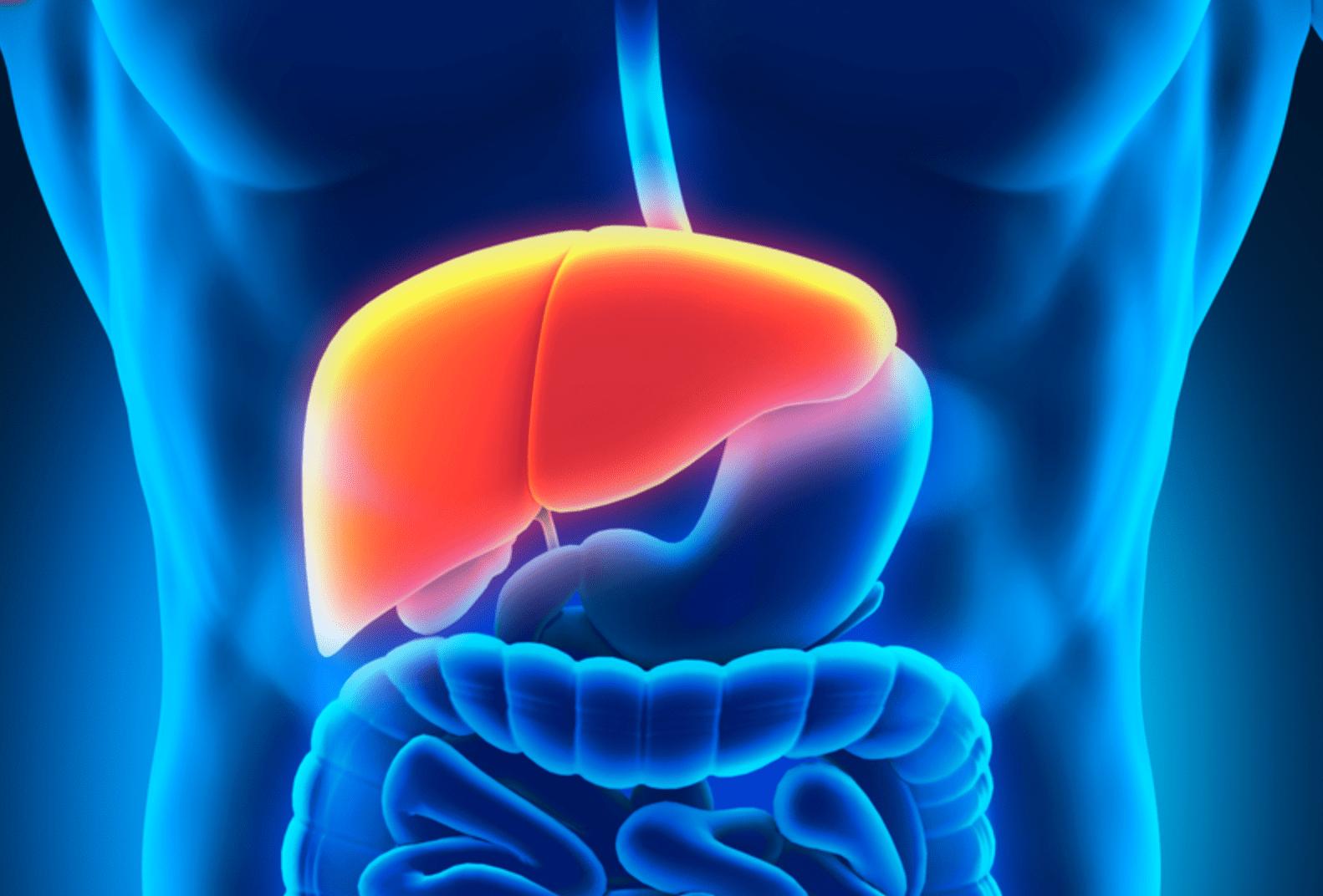 Sindrome di Gilbert: sintomi e alimentazione