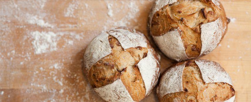 Regala un panino al disabile e viene multato: le reazioni sul web
