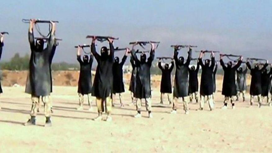 L'Isis teme la leishmaniosi: i jihadisti sempre più contagiati dalla malattia