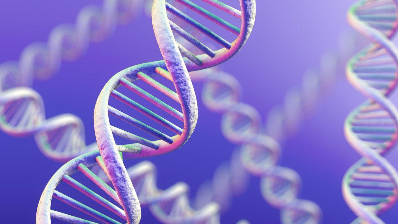 Manipolato il Dna in embrioni umani: ricerca shock in Cina