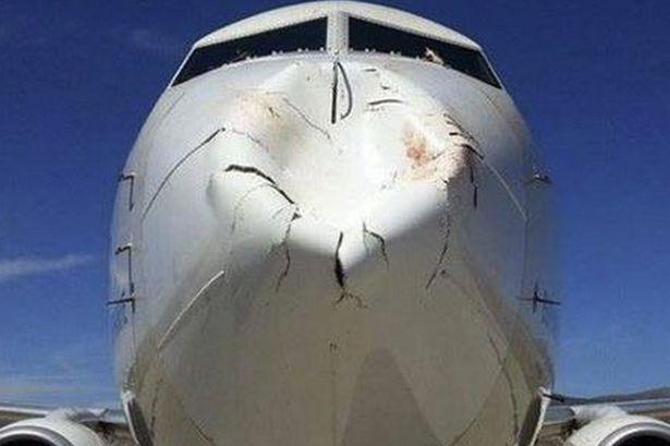 Aereo danneggiato da uno stormo di uccelli: paura durante l'atterraggio