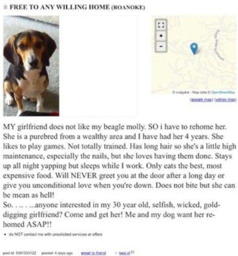 Costretto a scegliere tra fidanzata e cane, prende una decisione straordinaria