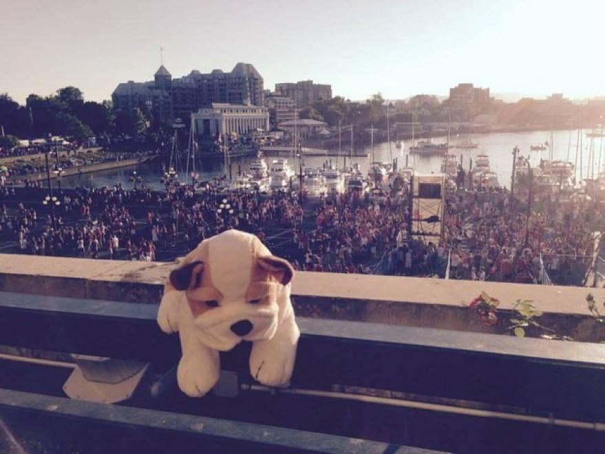 Peluche smarrito in albergo in Canada torna a casa in Olanda