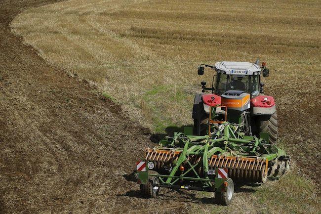 Giovani in agricoltura, i dati di un fenomeno in crescita