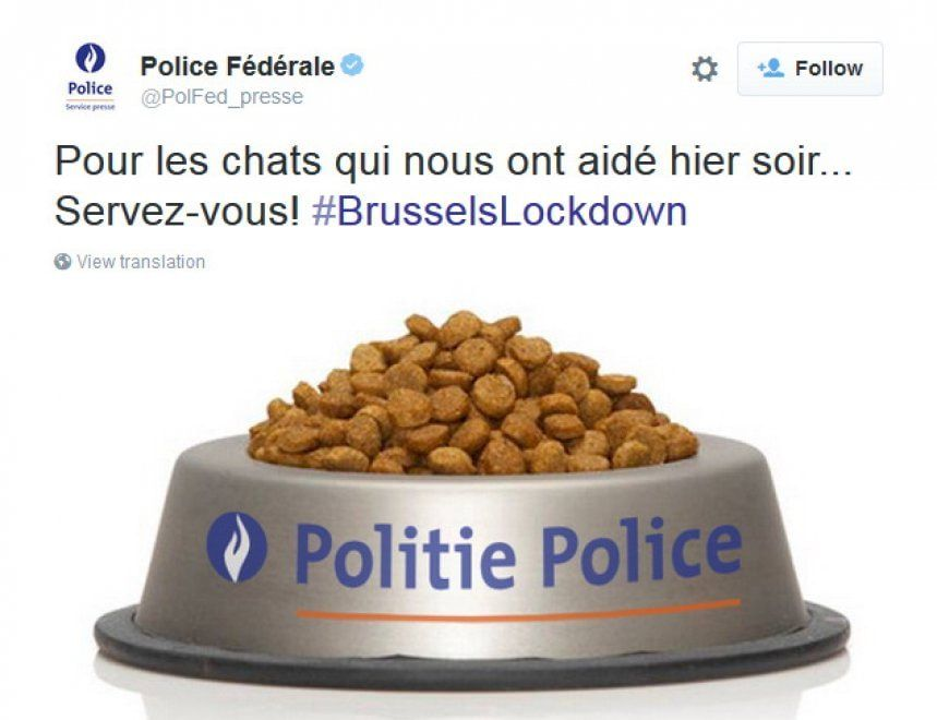 Tweet Polizia gatti contro terrorismo