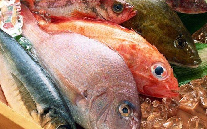 Pesce contraffatto