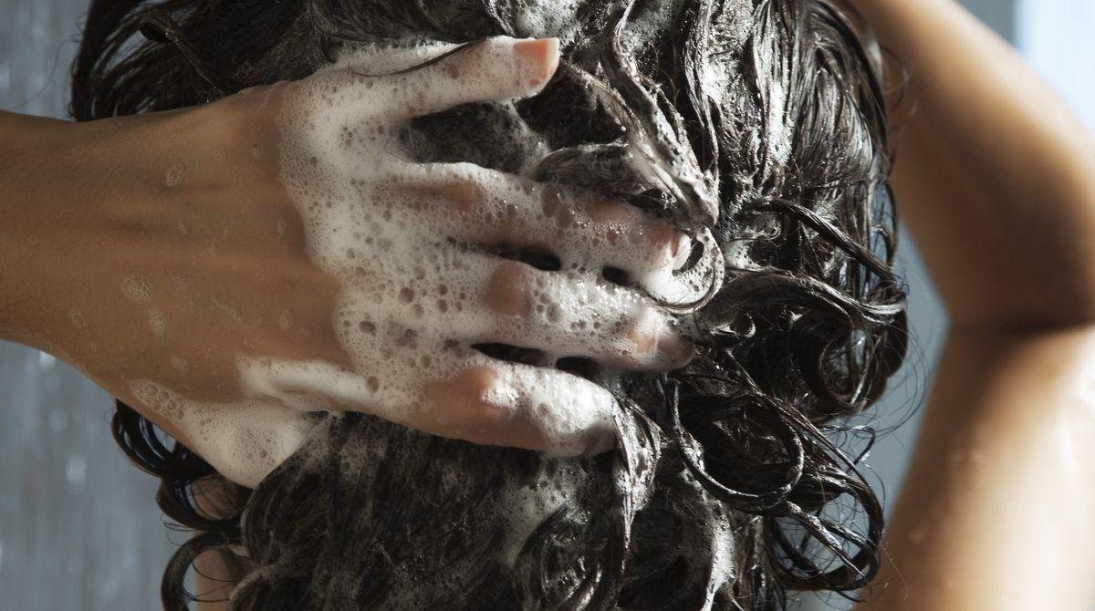 shampoo wen chaz dean
