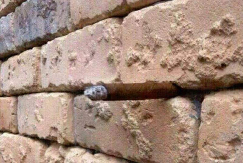 illusione muro