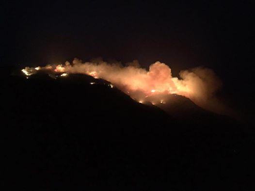 Pantelleria, incendi sull'isola da tre giorni e il sindaco chiede lo stato di emergenza
