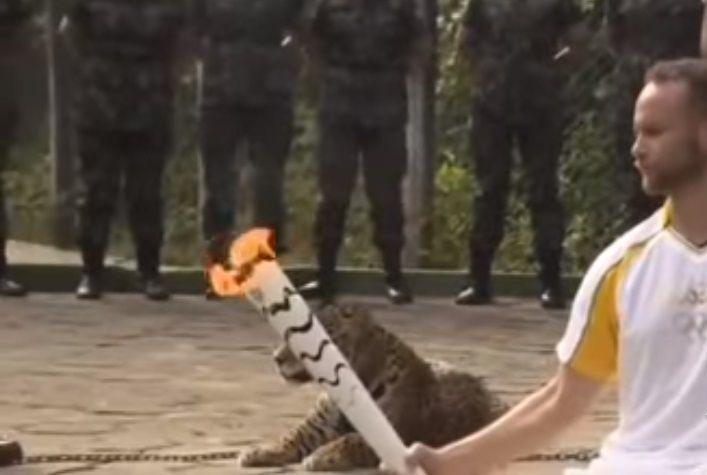 giaguaro Juma
