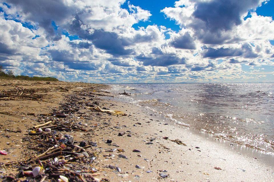 rifiuti mare