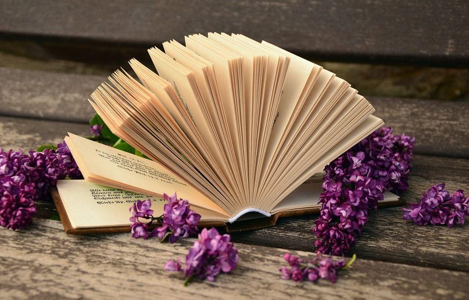 libri da leggere consigliati da nanopress