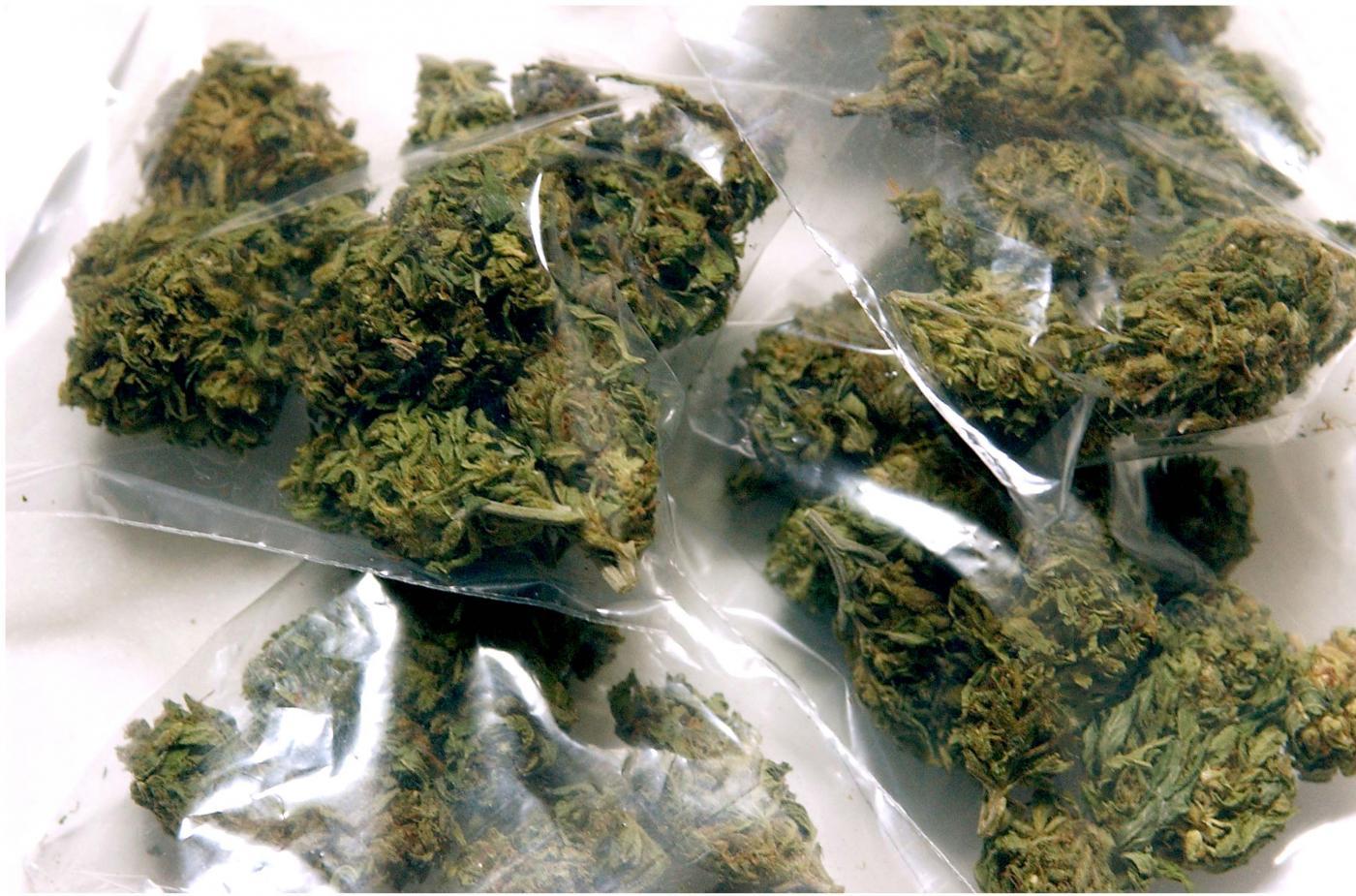 sacchetti di marijuana
