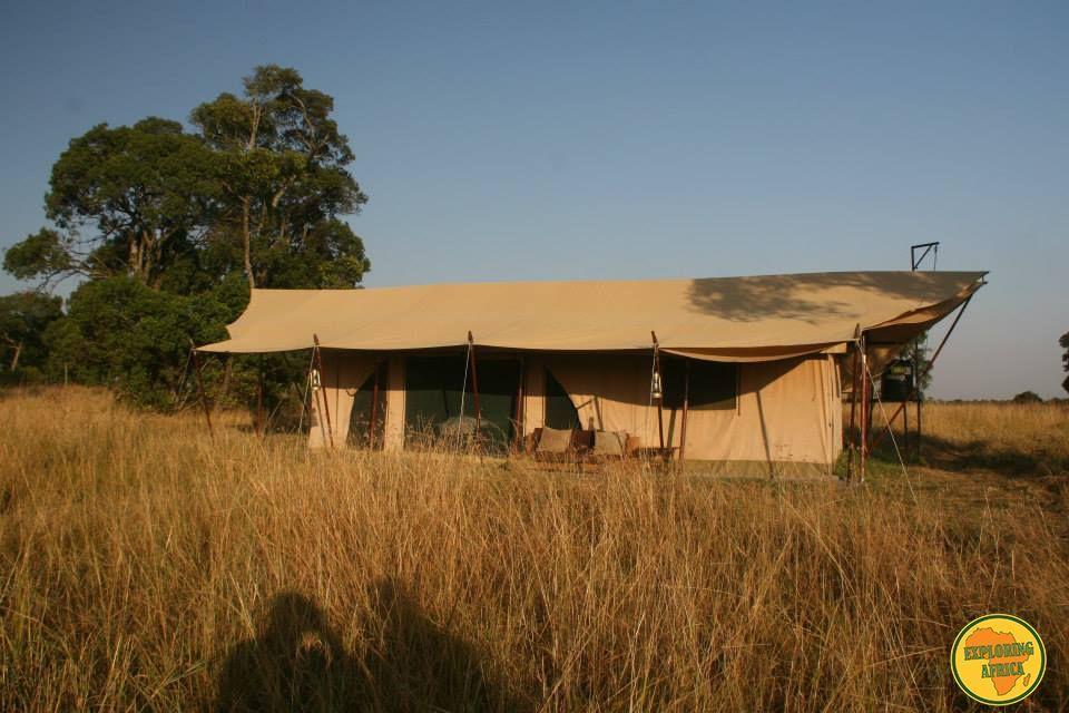 campo tendato serengeti