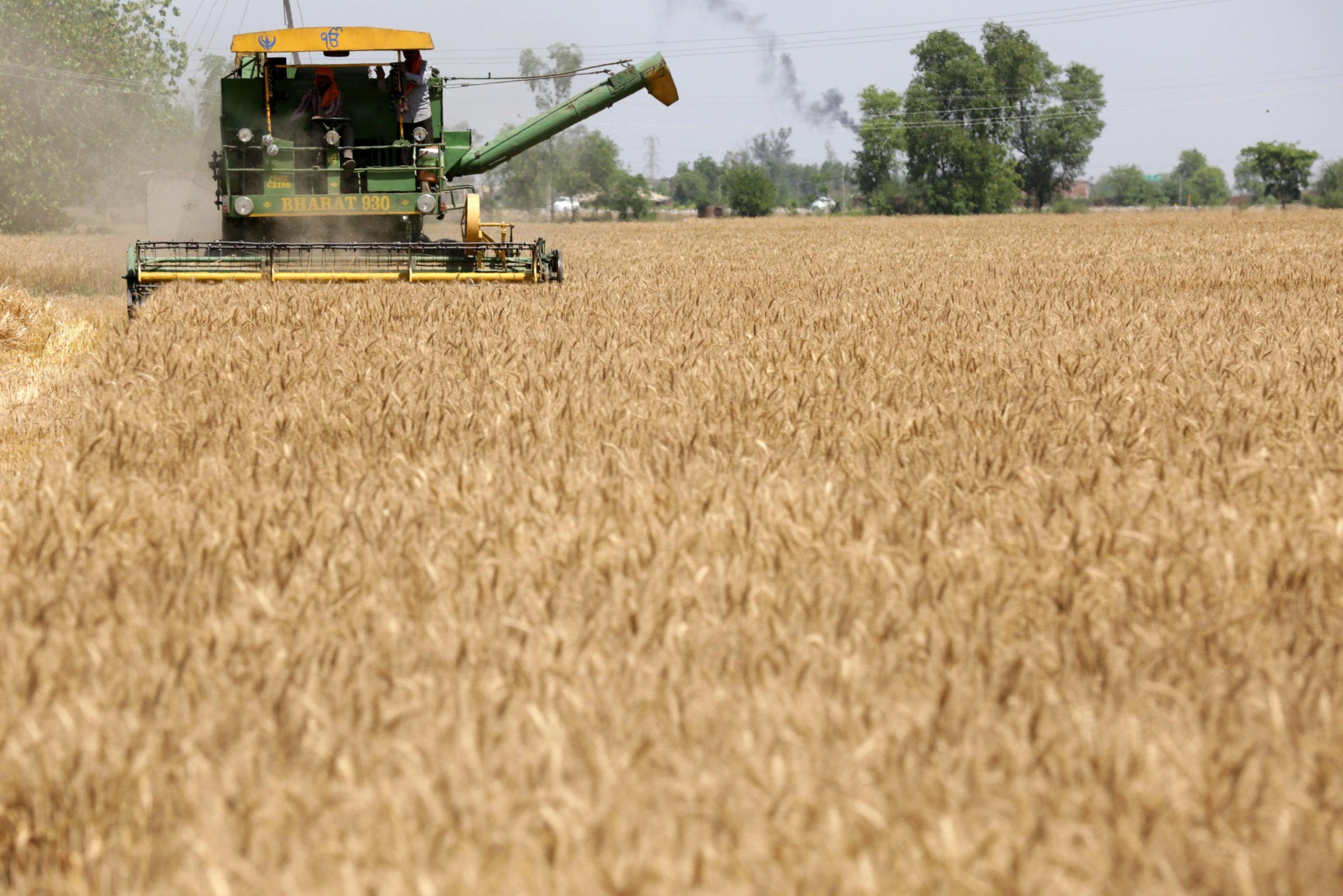Pensioni agricole