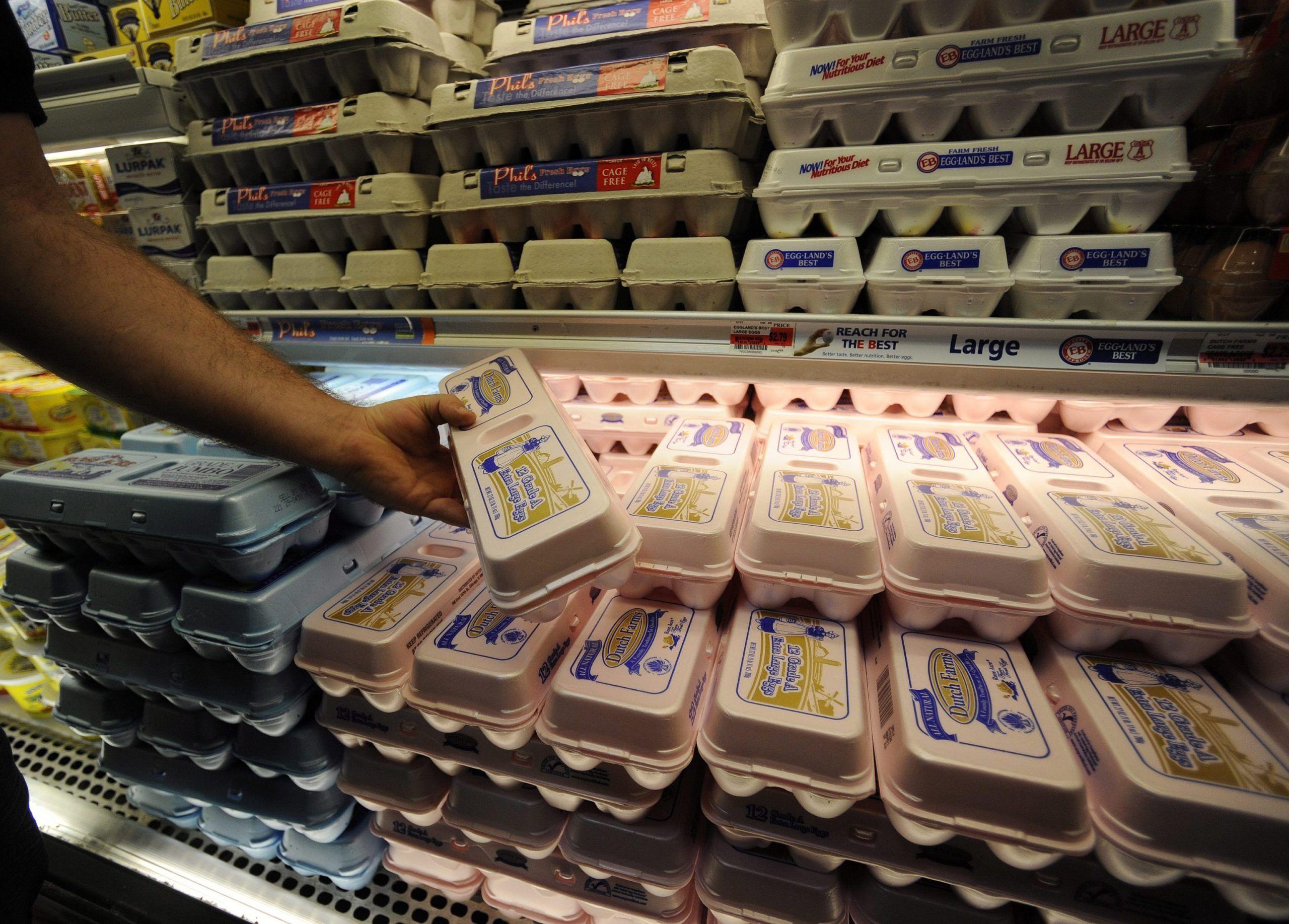 Alimenti a rischio salmonella
