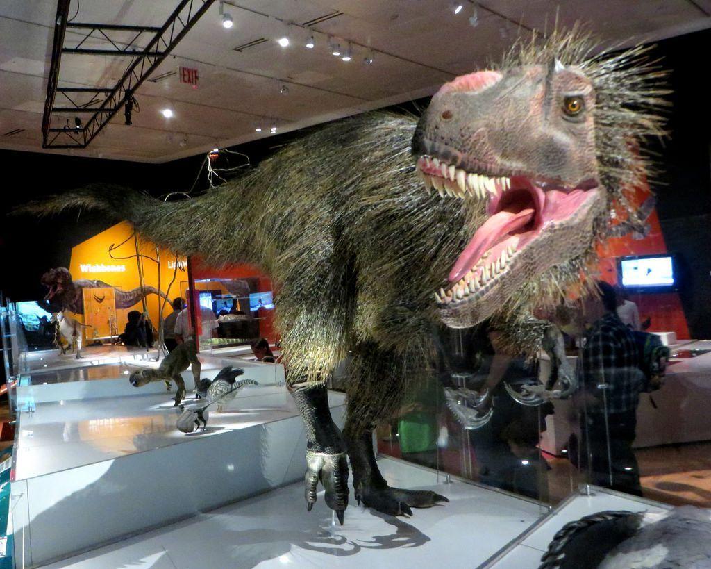dinosauri aspetto reale