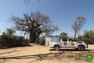 Come allestire un fuoristrada per il deserto africano (e quale scegliere)