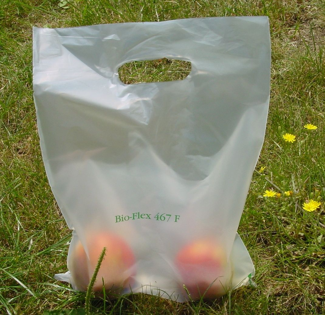 sacchetti biodegradabili pagamento