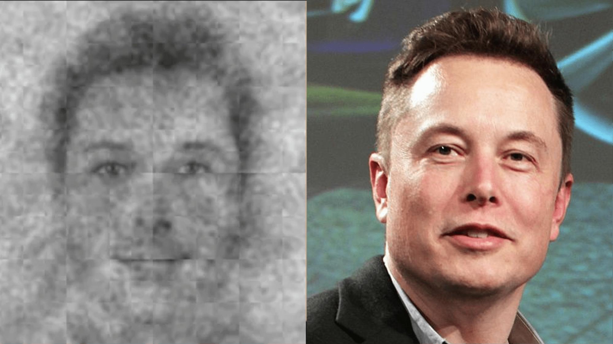 Il volto di Elon Musk è quello di Dio