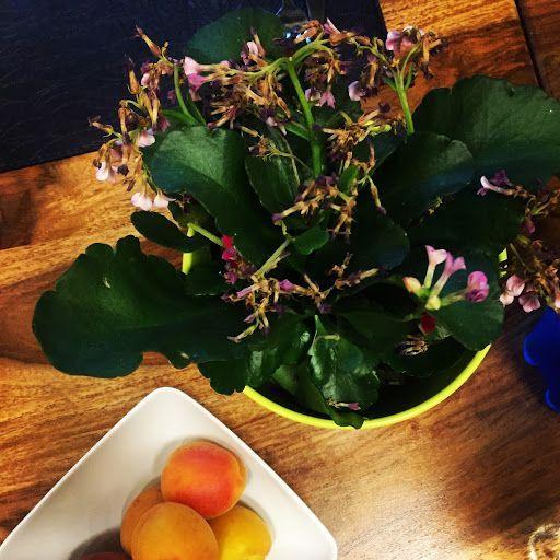 albicocche cena armena food and colors