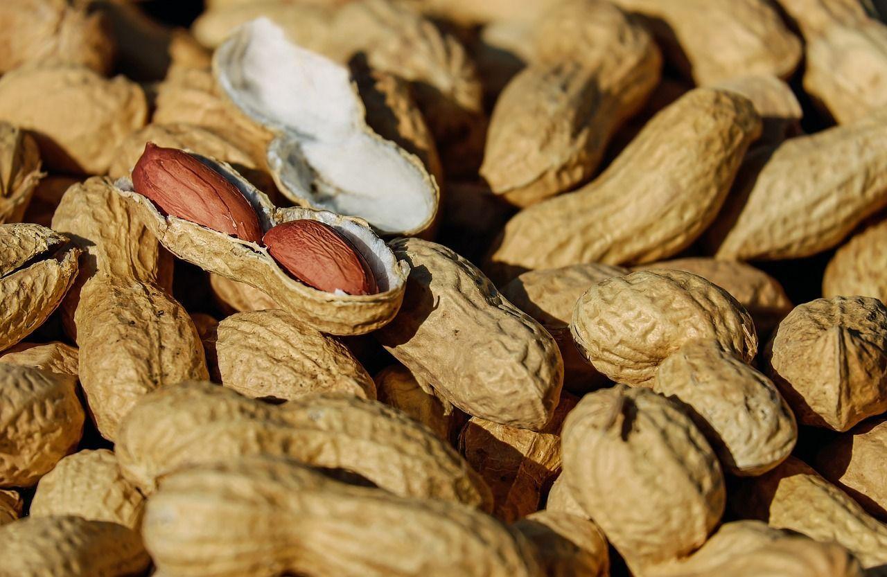 Regno Unito bimbo di 2 anni ha una grave reazione allergica per un pacchetto di noccioline chiuso male