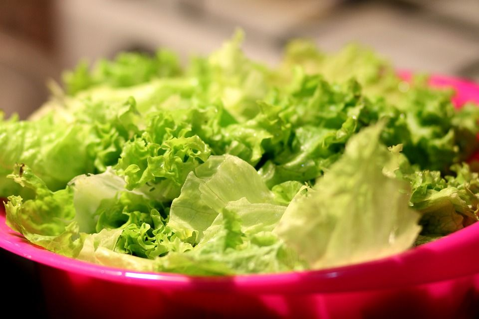 insalata contaminata Mcdonalds