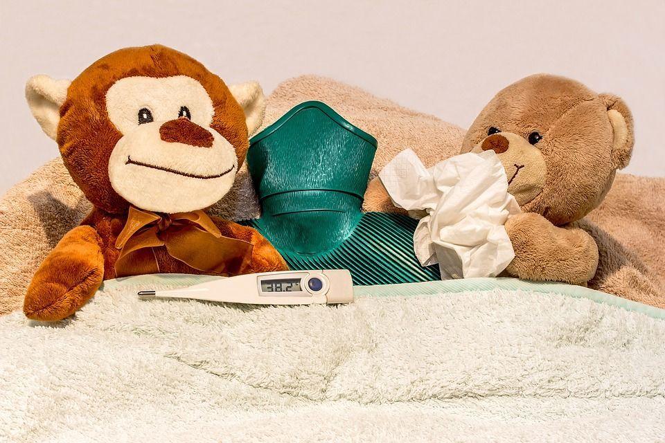 virus raffreddore influenza