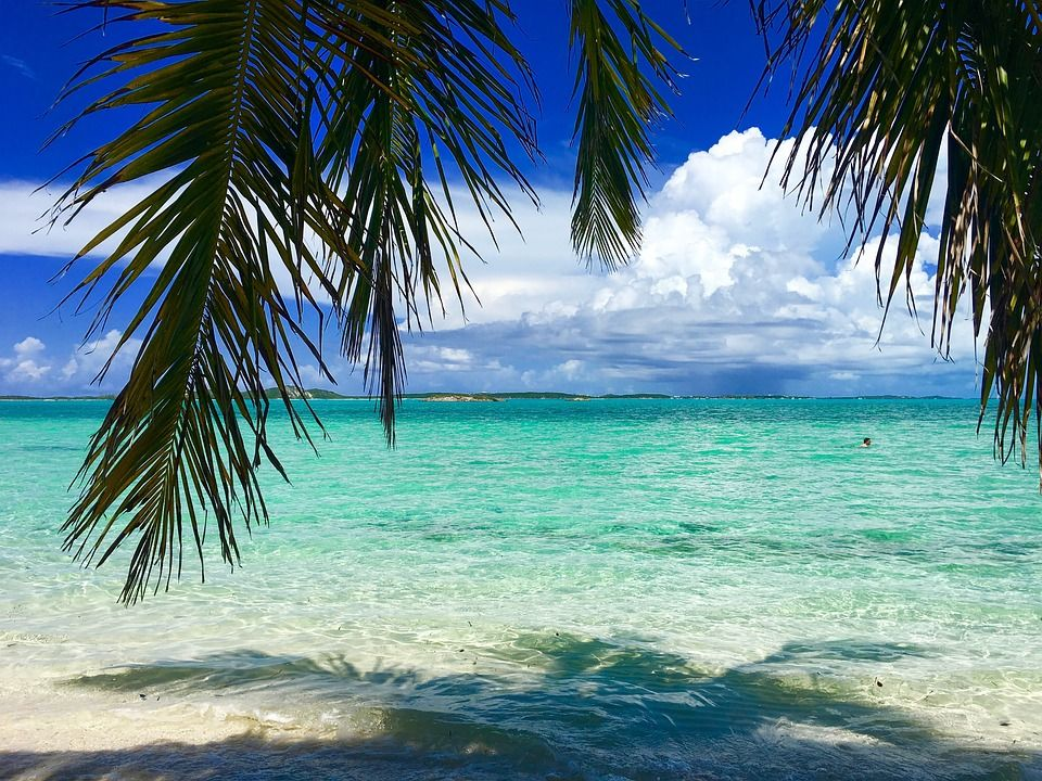 Offresi lavoro da babysitter per il Natale alle Bahamas