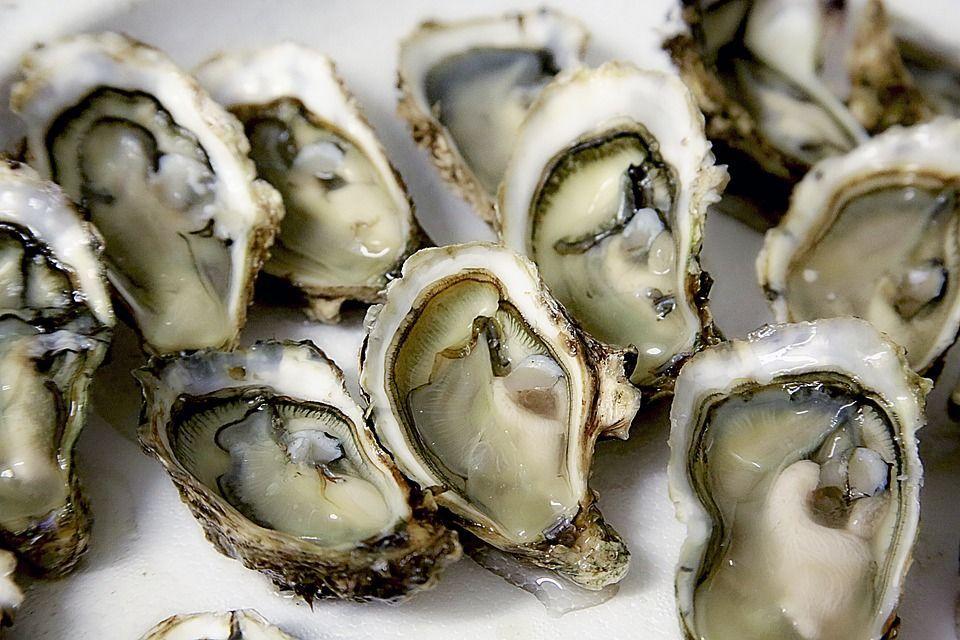 Ordina ostriche al ristorante e ci trova una perla da 2mila euro