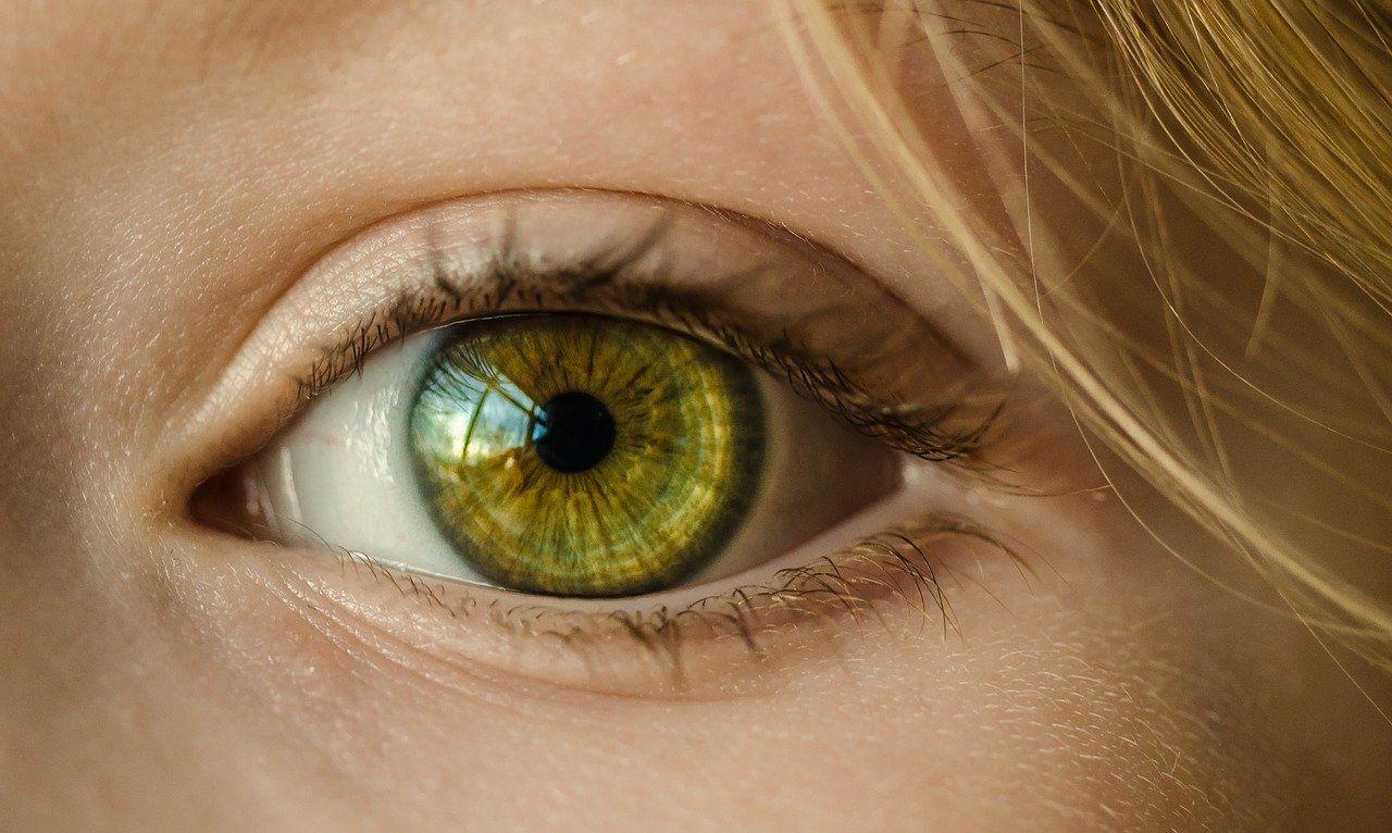 protesi liquida della retina ricerca italiana