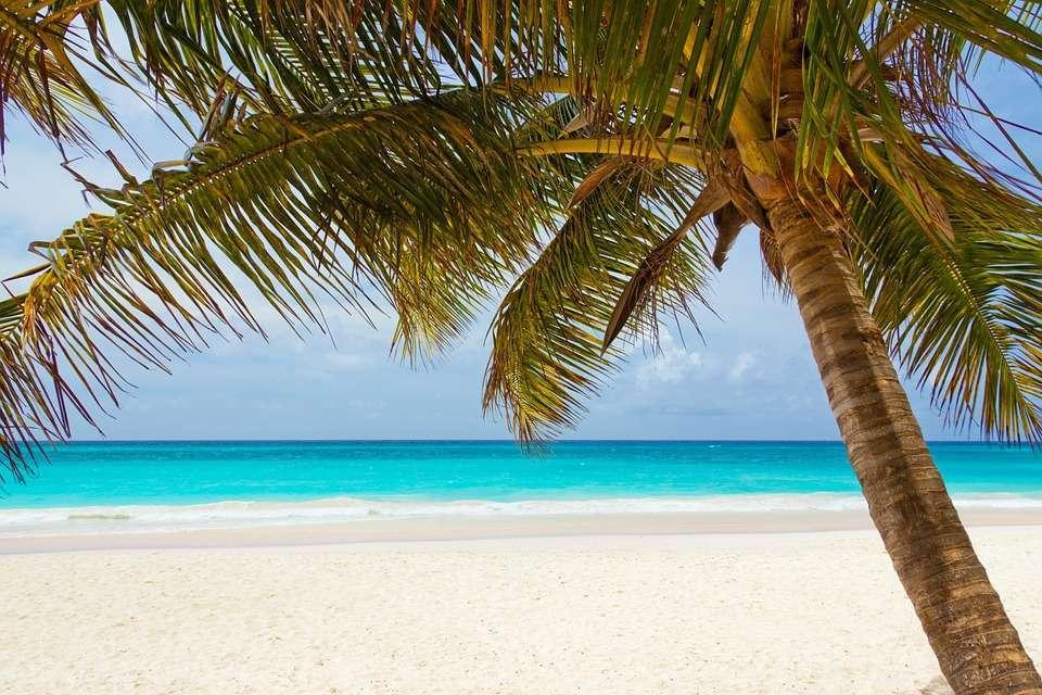 Immagini buona domenica da spiagge tropicali